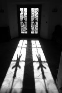Abbot House Door
