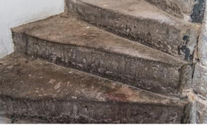 Abbot House Stairs