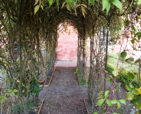 Abbot House Garden Arch